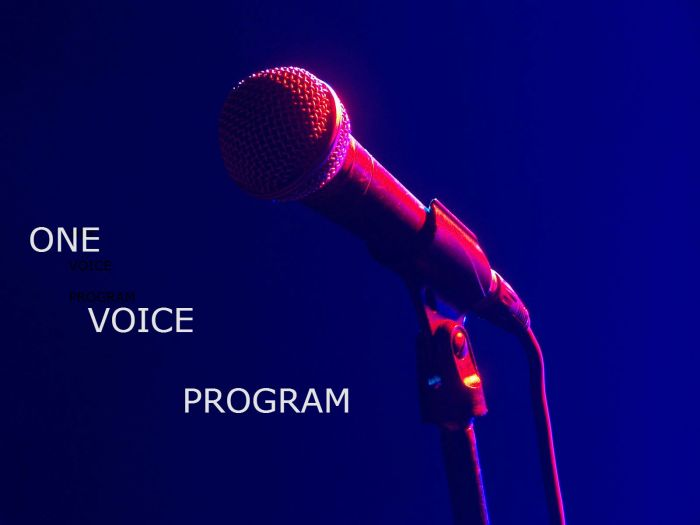 """THE ONE VOICE PROGRAM"" AT SOUND OUT RADIO"